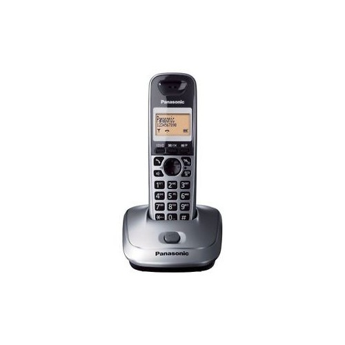 Teléfono Inalámbrico Panasonic KX-TG2511 Gris